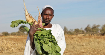 A farmer at Um Hujara, Kebkabiya locality, North Darfur - Sudan, with his vegetable bounty. ©FAO/Z. Jones